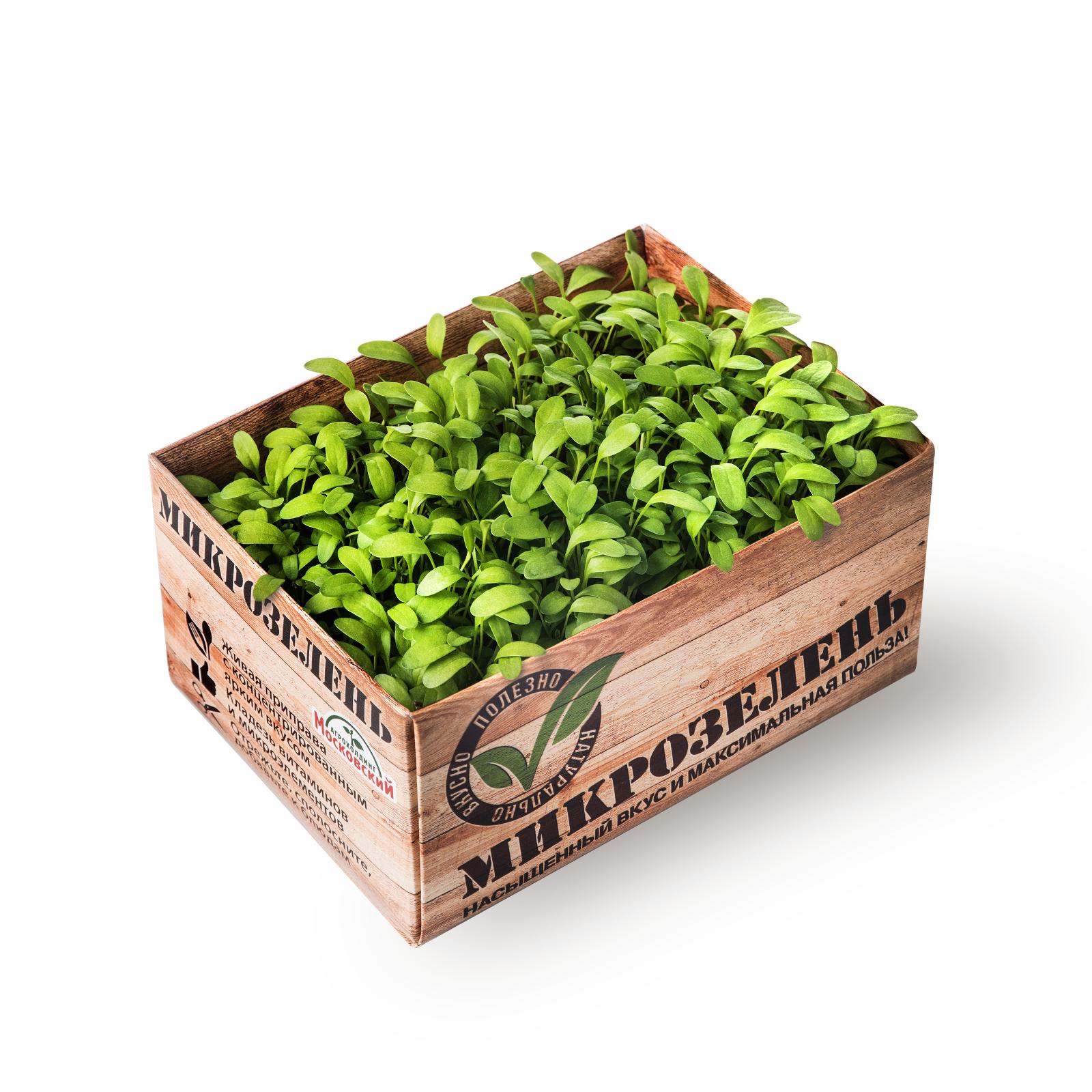 Image кресс салат