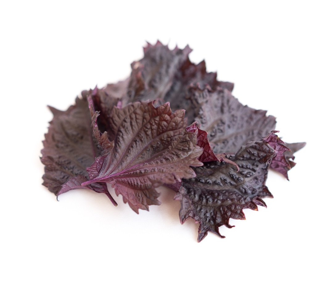 Image шисо/перилла красная (лист)
