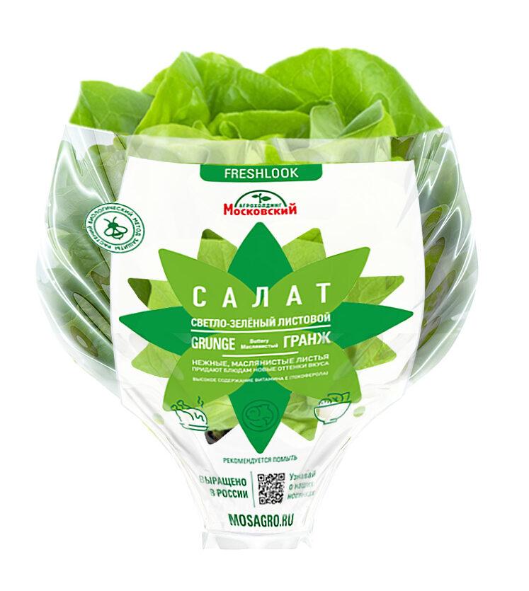 Image салат зеленый листовой Grunge
